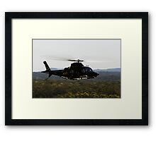 Black Hawk Framed Print