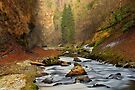 Autumn in Cheran canyon by Patrick Morand