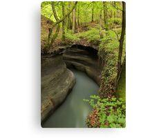 Parnant river through the springtime forest Canvas Print