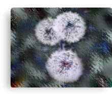 Fairey Wishes Canvas Print