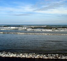 Waves at Woodbine by PPPhotoArt