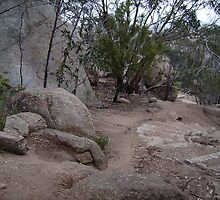 You Yangs National Park by mariajd