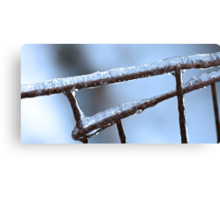 Winter Wire Fence Canvas Print