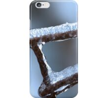 Winter Wire Fence iPhone Case/Skin