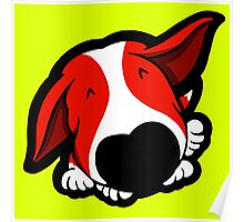 Big Nose Bull Terrier Red Poster
