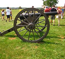 Canon at the Manassas Battlefield by Laurie Puglia