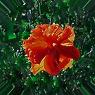 Red Flower Bubble by MichelleR