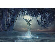 Snow queen 7 Photographic Print