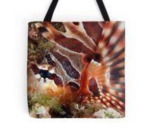 Zebra Lionfish Tote Bag