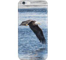 American Bald Eagle 2015-16 iPhone Case/Skin