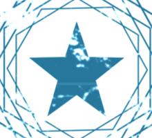 SeaWorld 3 Parks - Star Distressed Logo Sticker