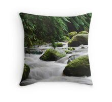 Toorongo River in Winter Throw Pillow