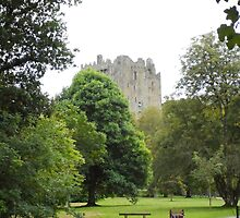 A Walk to Blarney by leen3318