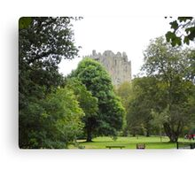A Walk to Blarney Canvas Print