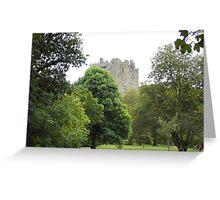 A Walk to Blarney Greeting Card