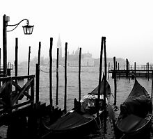 One day in Venice by BrigiBano