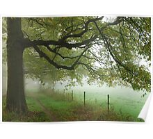 Going out on a foggy morning Poster