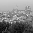 Florence by merran