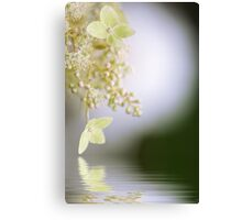 Reflect on Lace Canvas Print