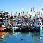 Busy Harbour. by John (Mike)  Dobson