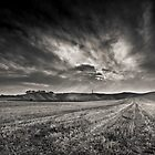 Cherhill White Horse and monument by greenbunion