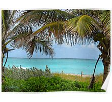 Tropical View Poster