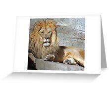 His Royal Highness Greeting Card