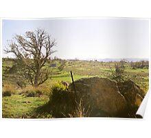 Country Australia Landscape Poster