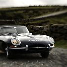 E-Type II by Matthew Walters