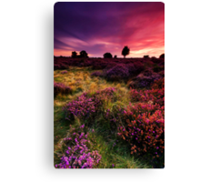 Dunwich Heath 1. Canvas Print