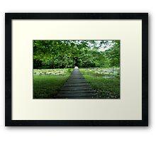 Walking Trough nature Framed Print