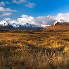Rannoch Moor, Scottish Highlands by makatoosh