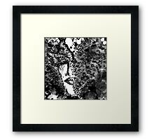 My mad man - Black and white Framed Print