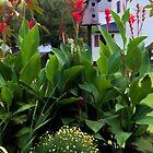 Flowers in Fall by vigor