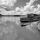 Amazon boats by Carlos Neto