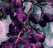 Purple Berries by GolemAura