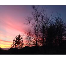 Sunset Trees Photographic Print