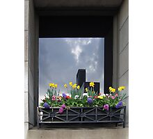 WINDOW DRESSING, CHICAGO STYLE Photographic Print
