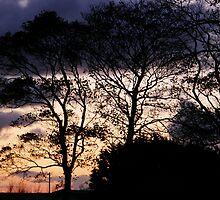 Halloween Sky by mikequigley