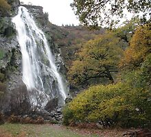 Powerscourt waterfall by John Quinn