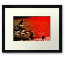 Murder of Crows Framed Print