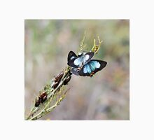 Common Imperial Blue Butterfly Unisex T-Shirt