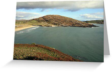Mizen Head coast by John Quinn