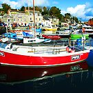 Padstow Harbour by Mark Wilson