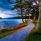 Magical Path by kenmo