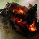 Smokin' by Rachel Hoffman