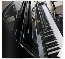 The Ebony and the Ivory - Piano Reflections Poster