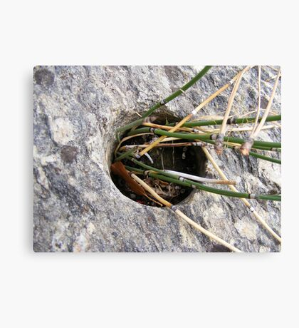 Dynamite Hole! Canvas Print