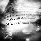 """Always"" by Noah  Waters"
