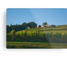 Another winery Metal Print